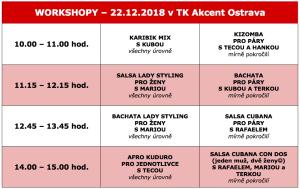 workshopy prosinec 2018